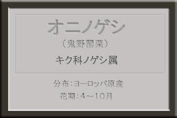 *オニノゲシ名札_edited-1.jpg